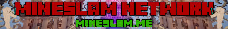 Mineslam network